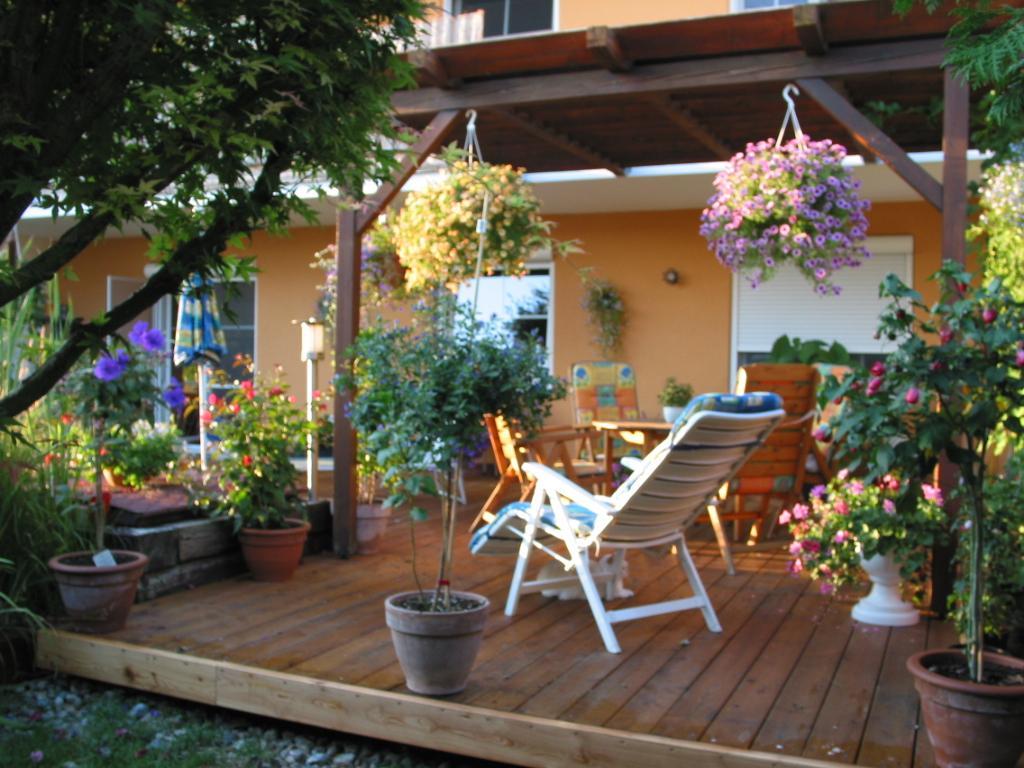 Was wächst bei euch auf fensterbank, balkon und terrasse ? [archiv ...