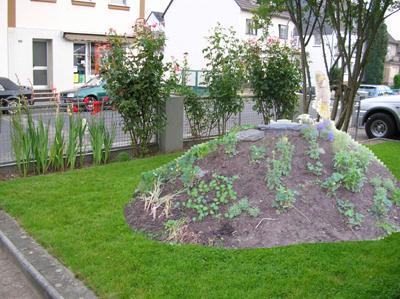 ich will auch einen neuen vorgarten page 2 mein sch ner garten forum. Black Bedroom Furniture Sets. Home Design Ideas