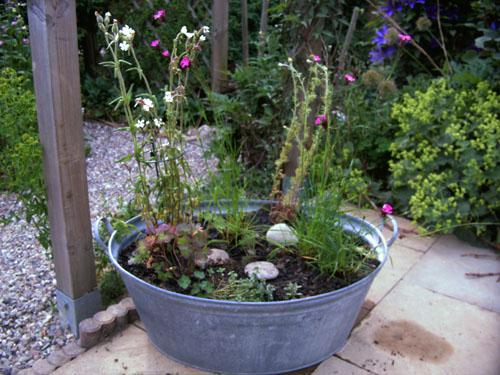 Wer hat eine zinkwanne bepflanzt page 2 mein sch ner for Gartengestaltung zinkwanne