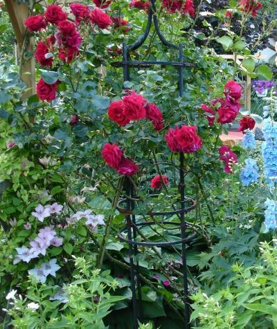 rankhilfen obelisken rosenb gen usw rosen und mehr. Black Bedroom Furniture Sets. Home Design Ideas