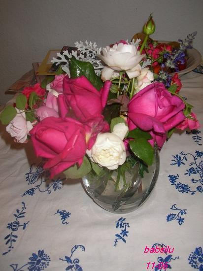 welche rosen bl hen bei euch noch im garten page 3 mein sch ner garten forum. Black Bedroom Furniture Sets. Home Design Ideas