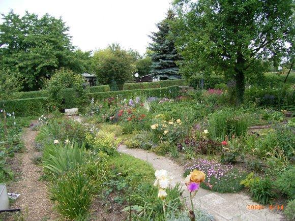 stauden f r randbepflanzung seite 2 pflanzenfragen. Black Bedroom Furniture Sets. Home Design Ideas