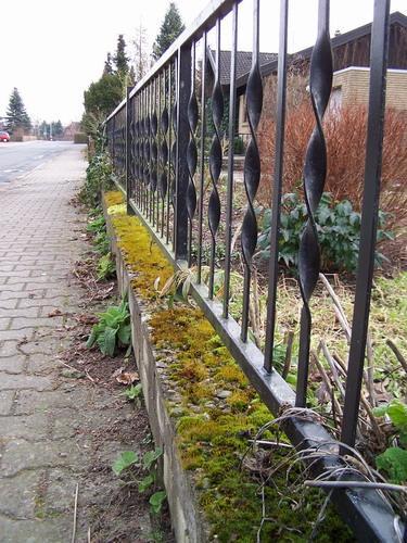 Beton Mauer Bepflanzen Mein Schoner Garten Forum