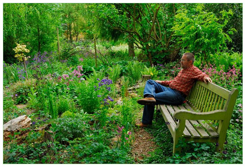 Der Fotograf Und Sein Garten - Kraut&rüben Forum Blumenwiese Anlegen Garten