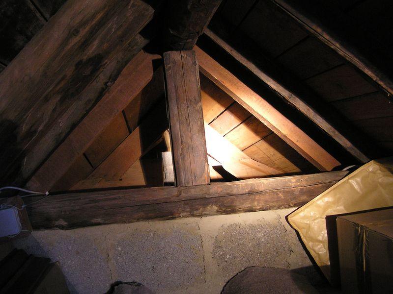 bilder eines gro en wespennestes und hornissennest unterm dach forum hornissenschutz. Black Bedroom Furniture Sets. Home Design Ideas