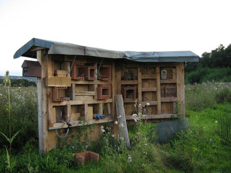 kraut r ben forum bio garten insektenhotel. Black Bedroom Furniture Sets. Home Design Ideas