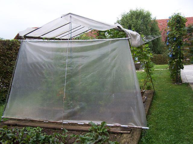 tomatenhaus selber bauen wie habt ihr das gemacht mein sch ner garten forum. Black Bedroom Furniture Sets. Home Design Ideas