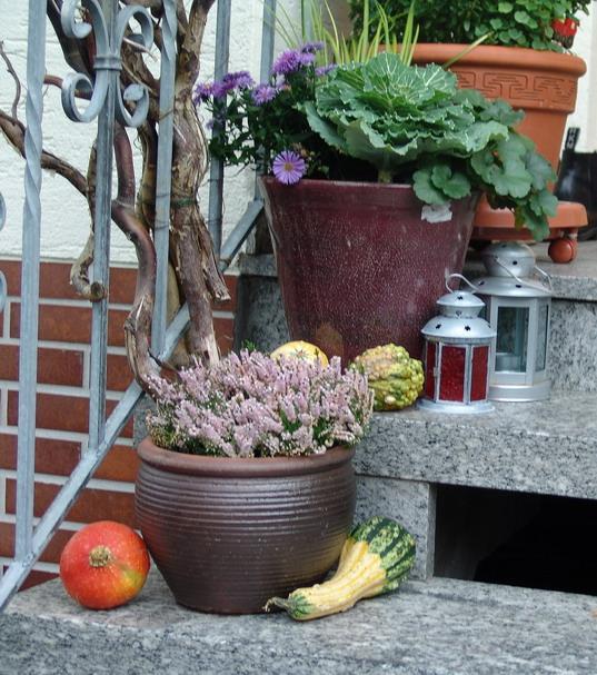 Herbstdeko bilder mein sch ner garten forum for Herbstdeko 2016 draussen