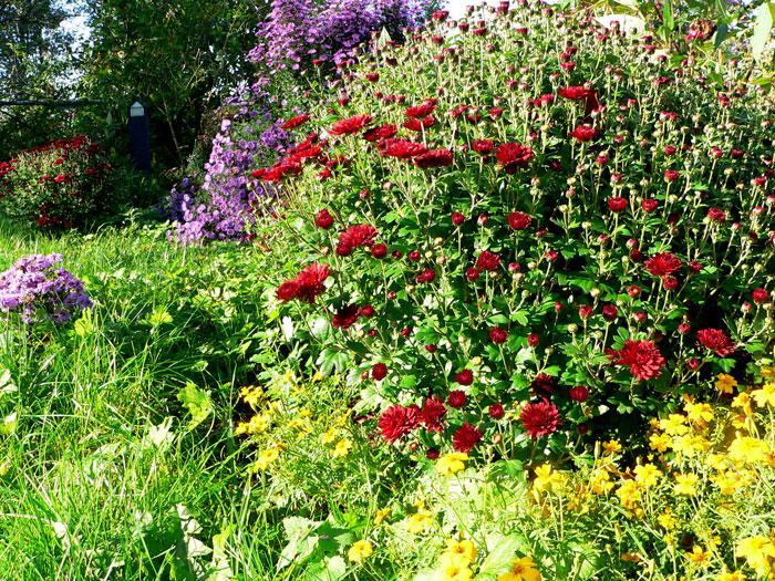 Was Tun Gegen Mäuse Im Garten mit gut stil für ihr haus ideen