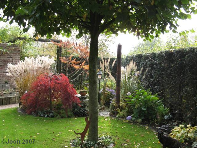 moin moin ***** oktober 2007 - seite 33 - gartenfreunde - mein, Gartenarbeit ideen