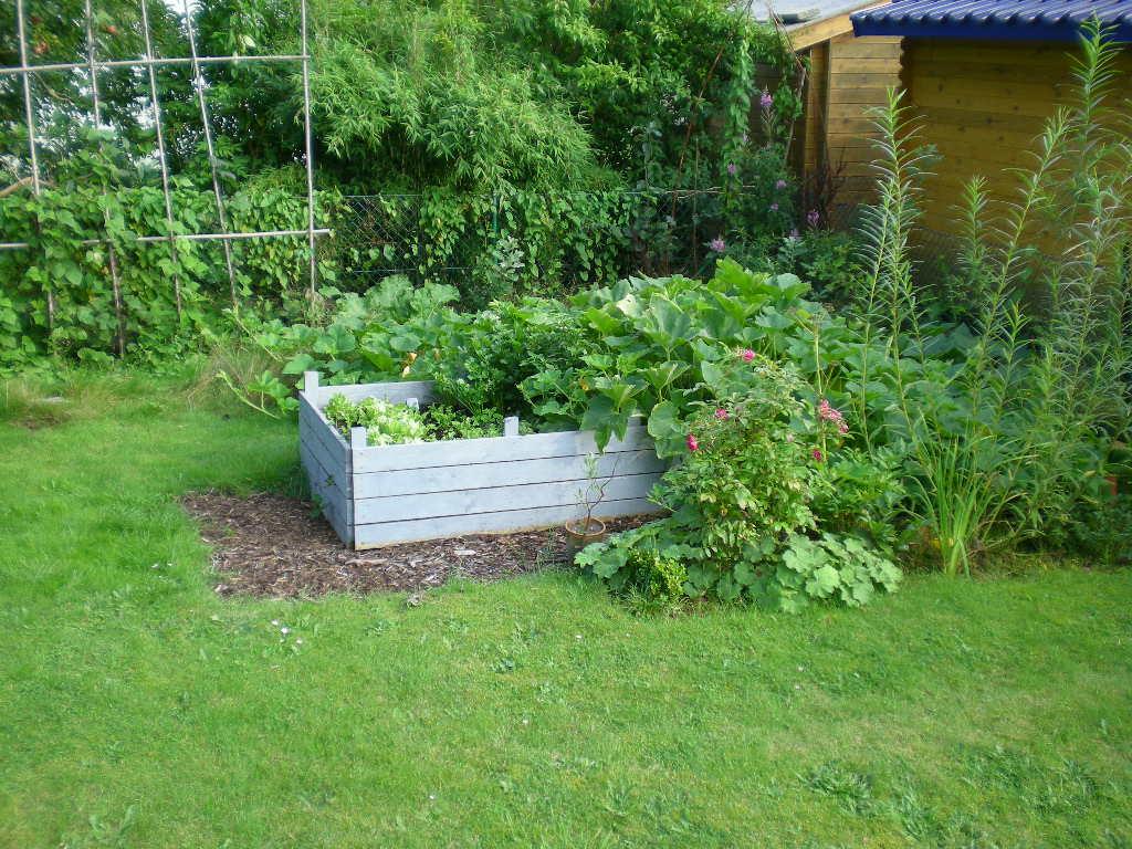 Hilfe mein rasenweg wird zum schlammpfad mein sch ner garten forum - Garten ohne gras ...