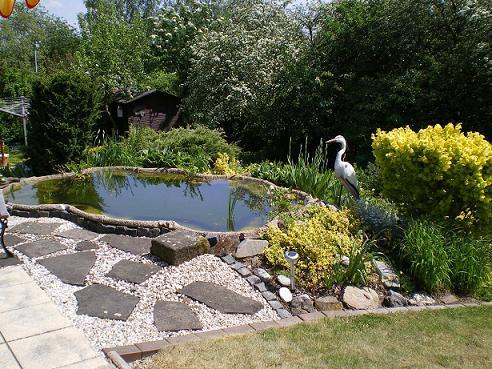 Großartig An die Teichprofis unter Euch ;) - Seite 1 - Gartenteich - Mein  GN11