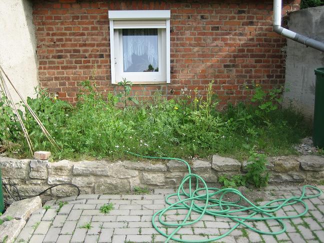 Hilfe erbeten bei beetgestaltung mein sch ner garten forum for Beetgestaltung terrasse