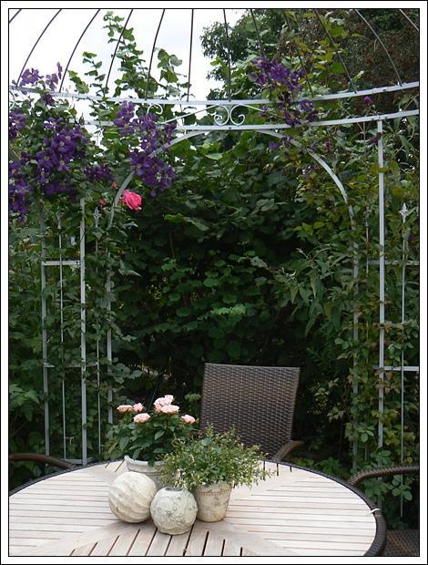 unsere sch nen rosen und mehr page 73 mein. Black Bedroom Furniture Sets. Home Design Ideas