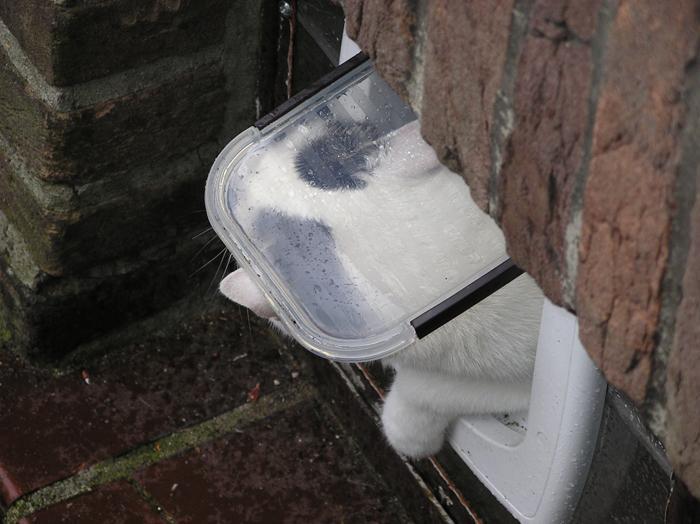 duschkabinen einbauen lassen neue dusche einbauen lassen eckventil waschmaschine duschkabine. Black Bedroom Furniture Sets. Home Design Ideas