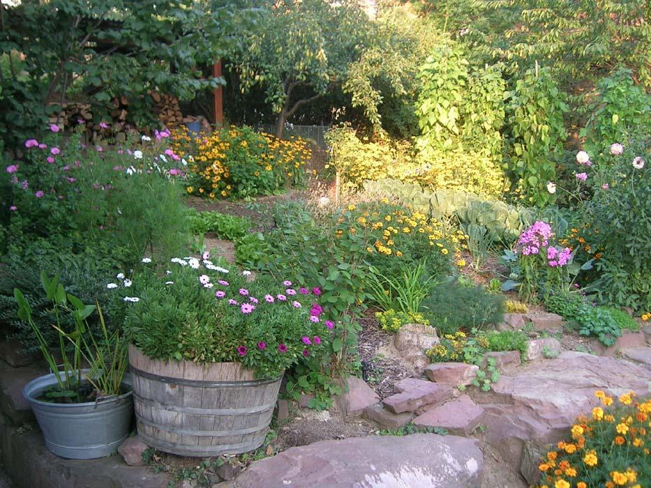 Kraut r ben forum vorstellung unseres kleinen neuen for Naturgarten gestalten