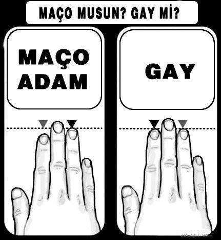 b2icb6cbl8nkzsaid - ma�o musun?  gay m� ?