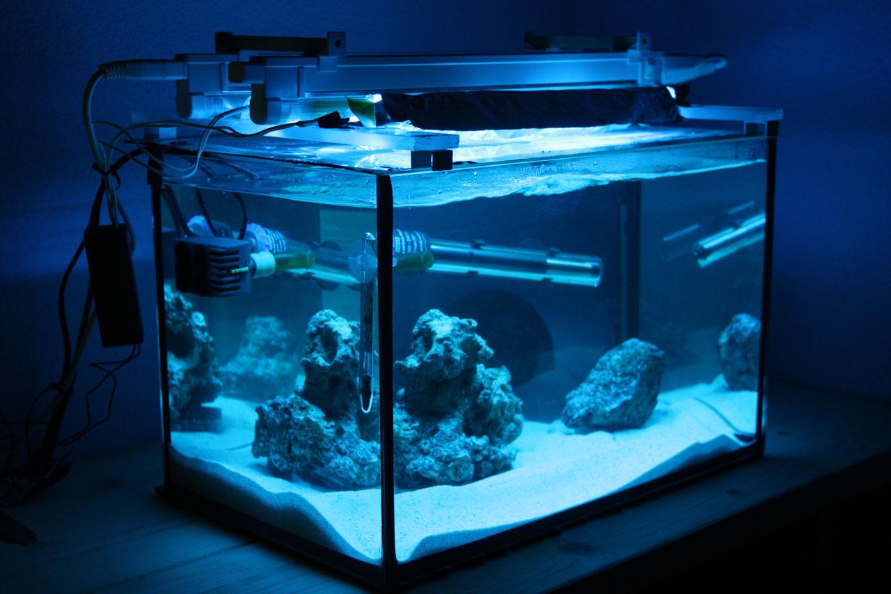 25l meerwasser und ein paar steine jetzt 54l meerwasser allgemein. Black Bedroom Furniture Sets. Home Design Ideas