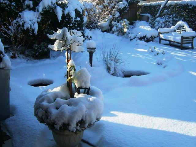 Winter im gartenteich forum for Gartenteich im winter