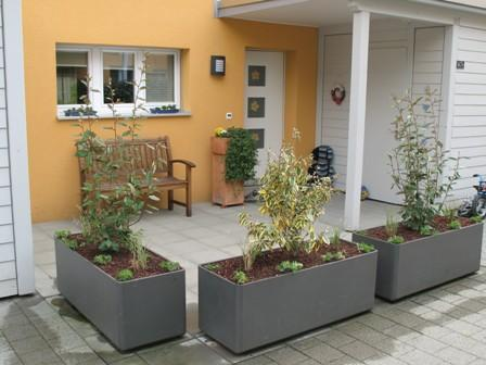 schweizer 65 page 57 mein sch ner garten forum. Black Bedroom Furniture Sets. Home Design Ideas