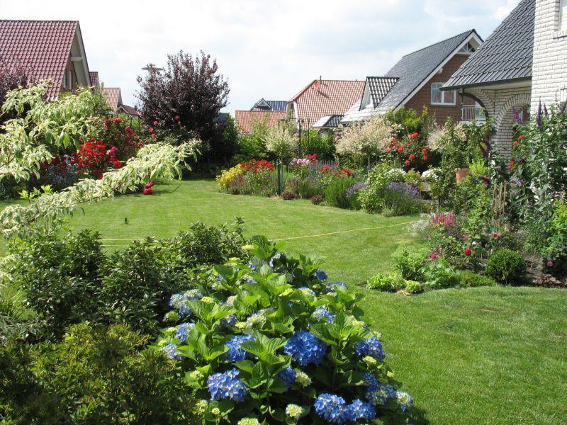 Mein sch ner garten forum mein schoner garten vorher for Gartengestaltung schmaler garten