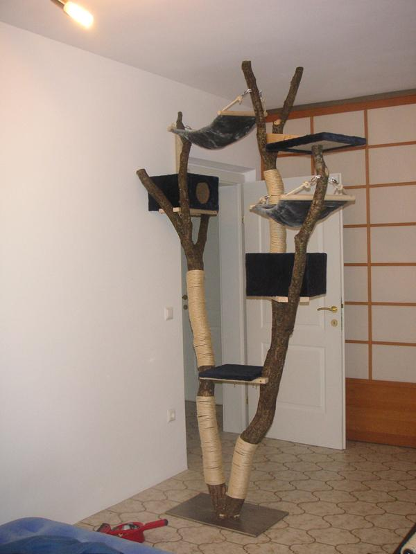 empfehlung kratzbaum seit 2009 alles f r die katz. Black Bedroom Furniture Sets. Home Design Ideas