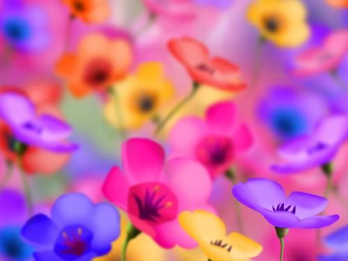 Çiçekler resimleri