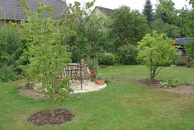 magnolie zeigt komische knospen mein sch ner garten forum. Black Bedroom Furniture Sets. Home Design Ideas
