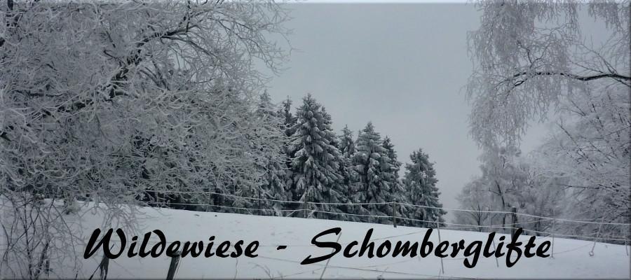 stein erde schnee wildewiese sauerland. Black Bedroom Furniture Sets. Home Design Ideas