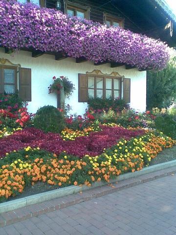 Gestaltung Fenster Blumenkasten Gesucht Page 2 Mein Schoner
