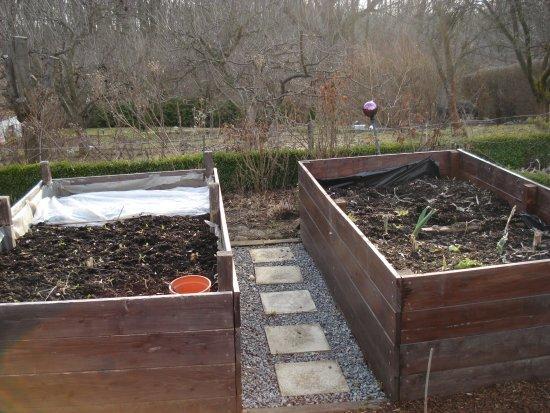 Hochbeet Eure Erfahrungen Mein Schoner Garten Forum