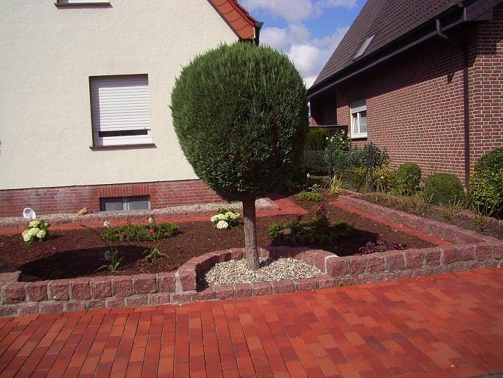 ideen für meinen vorgarten gesucht - seite 1 - gartengestaltung, Garten und Bauen