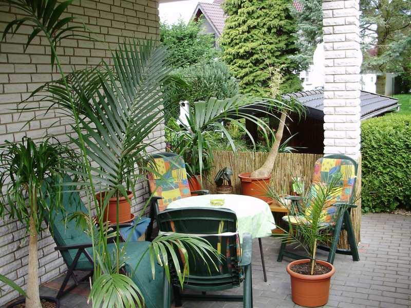 palmen und co kann man den winterschutz bestellen. Black Bedroom Furniture Sets. Home Design Ideas