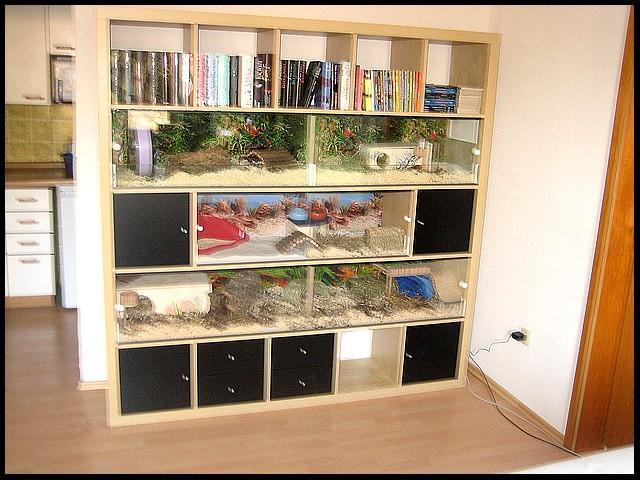 expedit umbau seite 3 archiv eigenbauk fig. Black Bedroom Furniture Sets. Home Design Ideas