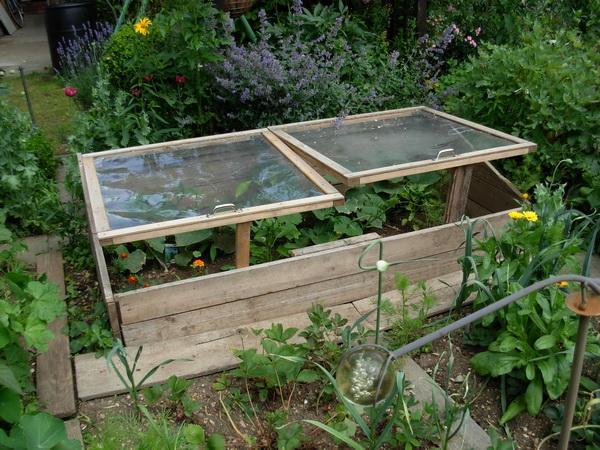 fr hbeetfreuden garten und natur naturgartenforum. Black Bedroom Furniture Sets. Home Design Ideas