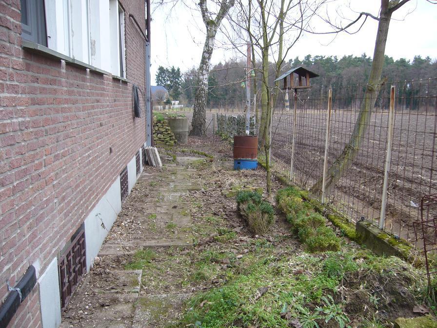 Ideen f r gartenecke an ostseite seite 1 for Gartengestaltung ostseite