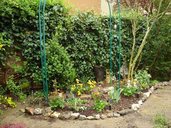Steingarten Neu Anlegen :  Steingarten reingesetzt, weil ich diesen ohnehin entferne bzw neu