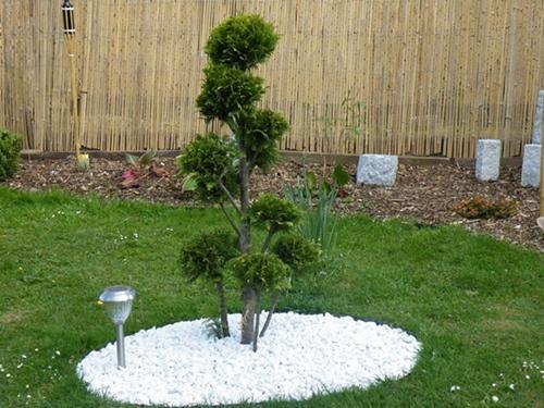 Japan Ecke - Mein schöner Garten Forum