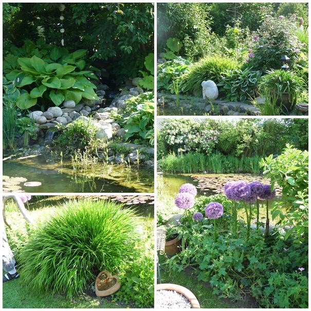 07283920180202 gartengestaltung um den teich inspiration for Gartengestaltung um den pool