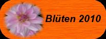 Blumen-2010