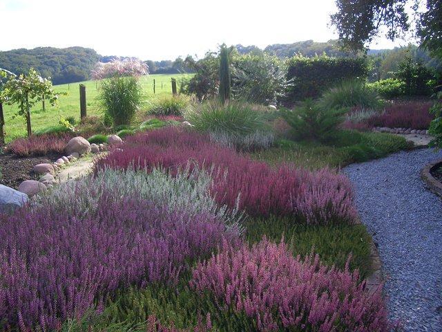 heidegarten anlegen gestalten – performal – siteminsk, Garten und bauen