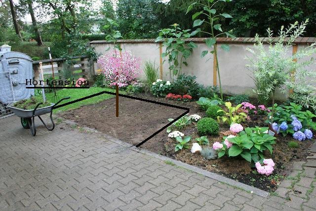 vorgarten mit lavendel – rekem, Garten und Bauen