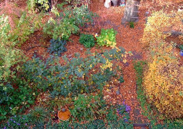 Minig rtchen 2011 teil 4 seite 17 gartengestaltung for Gartengestaltung verwunschen
