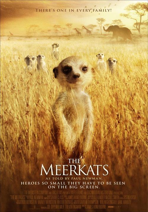 The Meerkats – Mirket Ailesi İzle