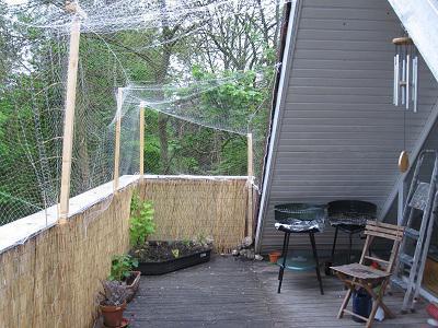 geschafft balkon katzensicher katzen zubeh r grinsekatzen das katzenforum f r katzenfreunde. Black Bedroom Furniture Sets. Home Design Ideas
