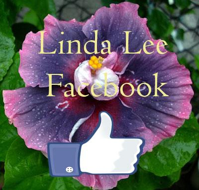 Taiwan Hibiscus Linda Lee Facebook private account