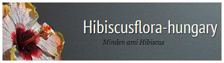 hibiscus-flora-hungary, the best hungarian hibiscus-website