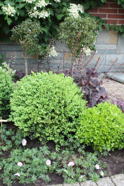 Eure gartenbilder beete gestaltungsideen traumsommer for Gartengestaltung ostseite