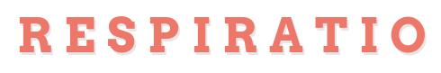 Respiratio - Shells/CJDNS/TOR/OpenVPN
