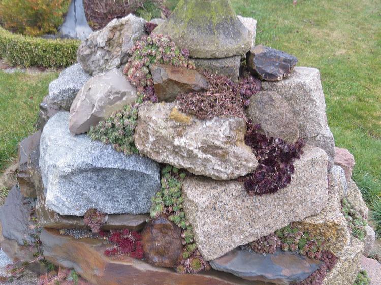 gartenfigur mit sedum dachwurz bepflanzen - seite 2 - gartenpraxis, Garten und erstellen